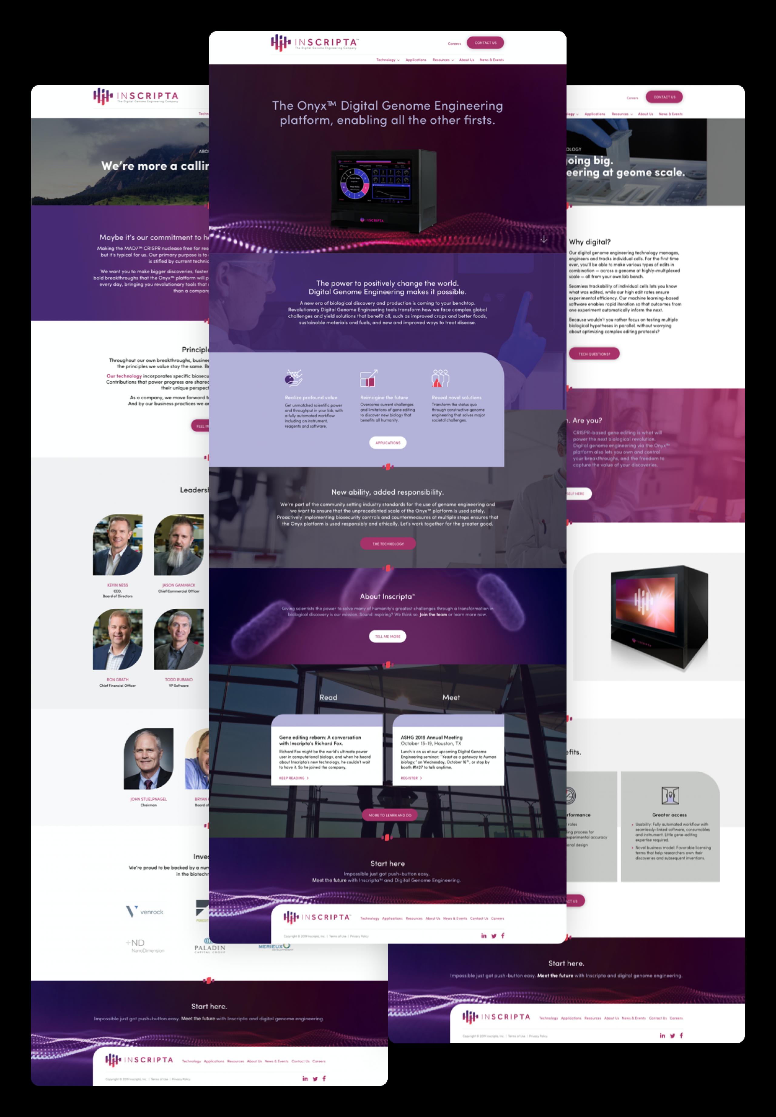 Inscripta website full length2